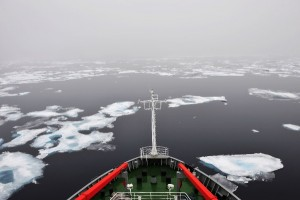 Last year saw a record melting of summer sea ice in the Arctic region [Xinhua Images]