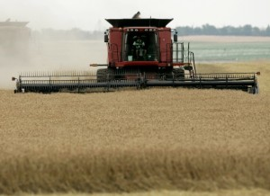 Food security is a major area of alignment for the five nations that constitute BRICS [AP]