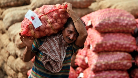 Potato and fruits prices shot up 46.41 per cent and 31.71 per cent respectively in July [AP]