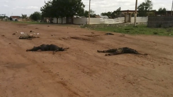 Bodies of dead South Sudanese, likely from the Dinka tribe, lie on a road in Bentiu days after mass killings were carried out by members of the Nuer tribe [AP]