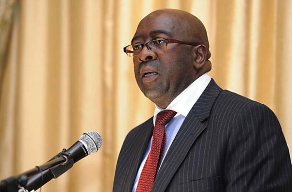 South African Finance Minister Nhlanhla Nene on Wednesday presented his first budget on 25 February 2015